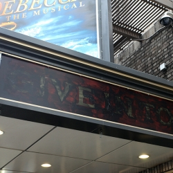 http://vernaculartypography.com/files/gimgs/th-19_Woodward_Vernacular Typography_Times Square Theaters_029.jpg