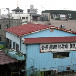 http://vernaculartypography.com/files/gimgs/th-51_mw_vernacular typography_japan_007.jpg