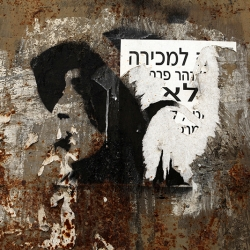 http://vernaculartypography.com/files/gimgs/th-56_Woodward-Vernacular-Typography-Israel_288.jpg