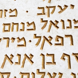 http://vernaculartypography.com/files/gimgs/th-56_Woodward-Vernacular-Typography-Israel_334.jpg