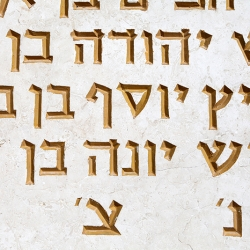 http://vernaculartypography.com/files/gimgs/th-56_Woodward-Vernacular-Typography-Israel_335.jpg